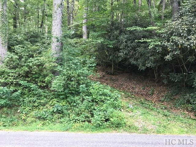 00 Foreman Road, Highlands, NC 28741 (MLS #86829) :: Lake Toxaway Realty Co