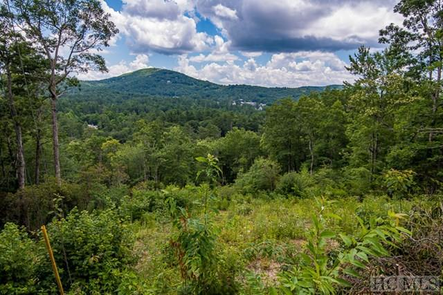 Lot 46A South Drive, Highlands, NC 28741 (MLS #86871) :: Lake Toxaway Realty Co