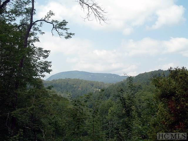 Lt. 6 Whetstone Gap Road, Lake Toxaway, NC 28747 (MLS #86883) :: Lake Toxaway Realty Co