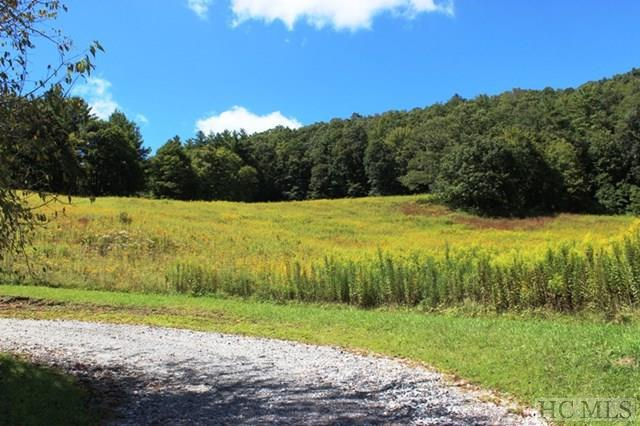 TBD Shirley Pressley Road, Glenville, NC 28736 (MLS #86898) :: Lake Toxaway Realty Co