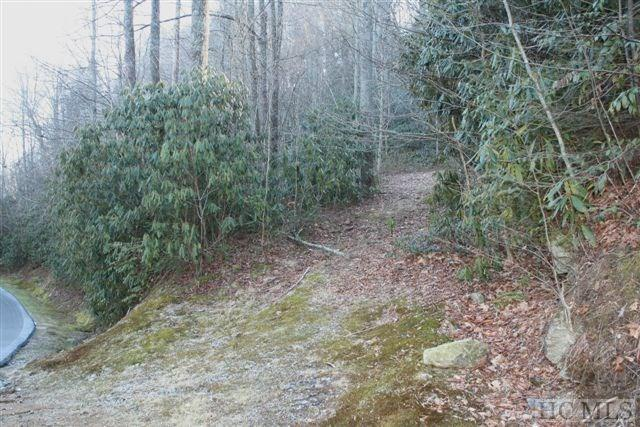 A-14 Falls Drive West, Highlands, NC 28741 (MLS #86938) :: Berkshire Hathaway HomeServices Meadows Mountain Realty