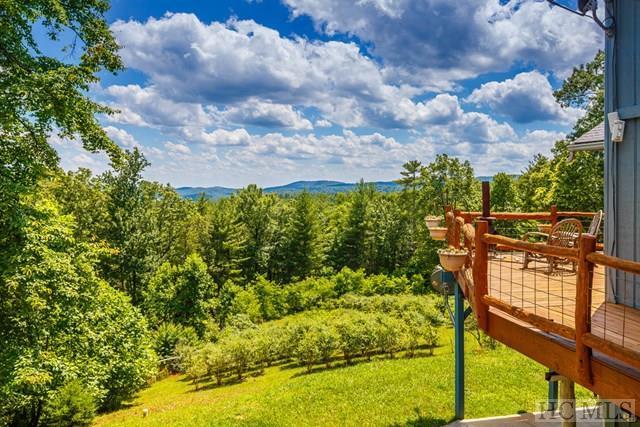 Clayton, GA 30525 :: Berkshire Hathaway HomeServices Meadows Mountain Realty