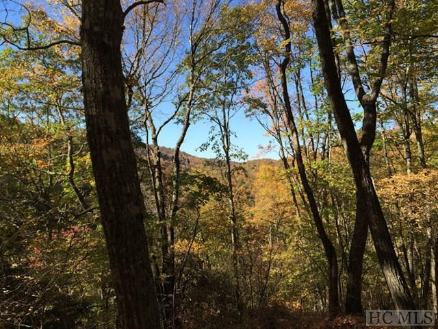 Lot #10 Trailhead Way, Glenville, NC 28736 (MLS #86980) :: Berkshire Hathaway HomeServices Meadows Mountain Realty