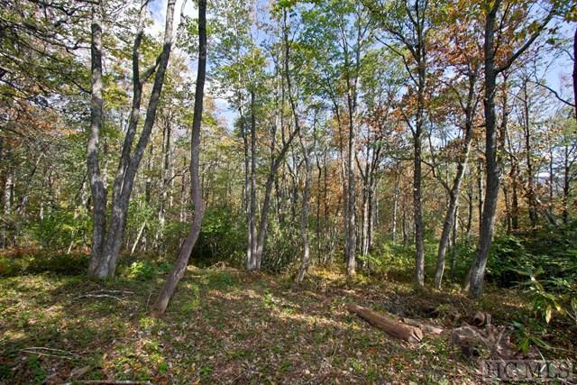 10 Hardscrabble Ridge Road, Highlands, NC 28741 (MLS #87000) :: Lake Toxaway Realty Co
