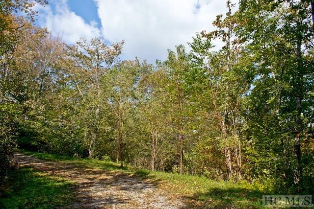E Tanner Loop, Highlands, NC 28741 (MLS #87003) :: Berkshire Hathaway HomeServices Meadows Mountain Realty