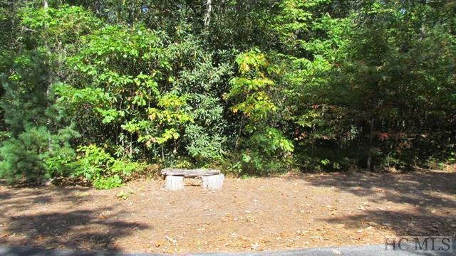 Lot #22 Woods Summit Lane, Cashiers, NC 28717 (MLS #87008) :: Lake Toxaway Realty Co