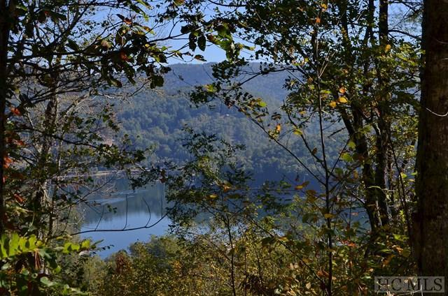Lot 5 Top Of The World Lane, Cullowhee, NC 28723 (MLS #87042) :: Landmark Realty Group