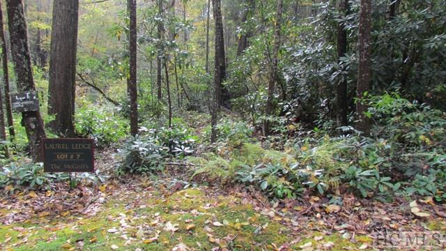 Lot # 7 Cascades Falls Trail, Cashiers, NC 28717 (MLS #87058) :: Landmark Realty Group