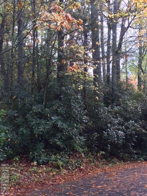 0 Cullasaja Drive, Highlands, NC 28741 (MLS #87064) :: Berkshire Hathaway HomeServices Meadows Mountain Realty