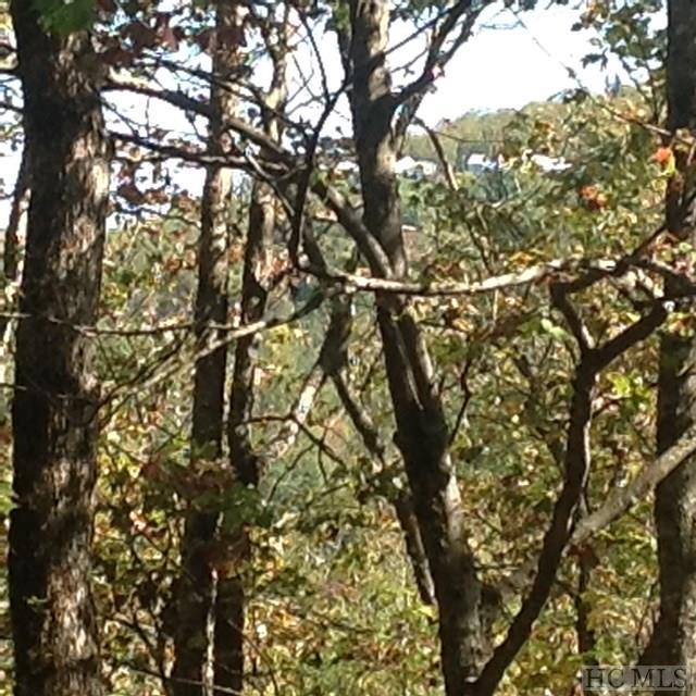 Lot 10 Highlands Point Road, Highlands, NC 28741 (MLS #87074) :: Lake Toxaway Realty Co