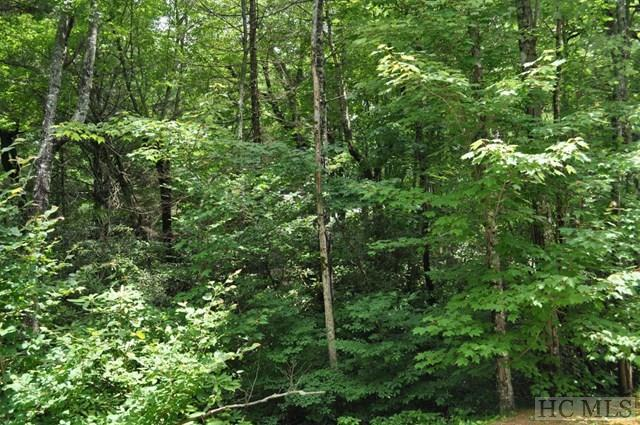 Lot 37 Rough Bark Road, Sapphire, NC 28774 (MLS #87096) :: Lake Toxaway Realty Co