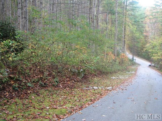 61 Falls Brook, Tuckasegee, NC 28783 (MLS #87105) :: Berkshire Hathaway HomeServices Meadows Mountain Realty