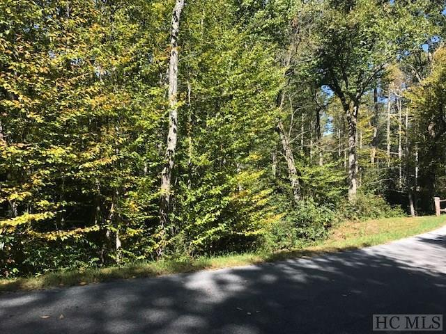 Lot 225 Rainbow Falls Trail, Cashiers, NC 28717 (MLS #87128) :: Berkshire Hathaway HomeServices Meadows Mountain Realty
