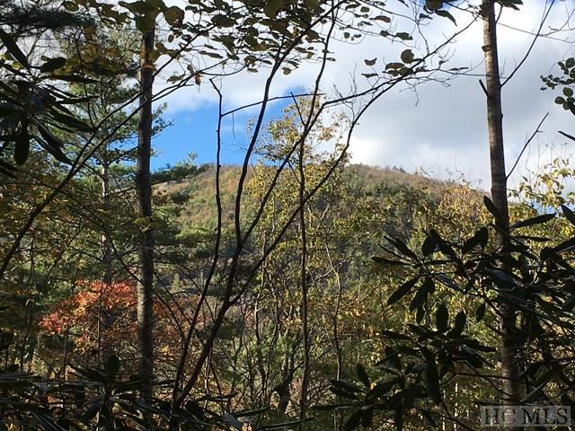 Lot 41 Haven Ridge Trail, Cashiers, NC 28717 (MLS #87133) :: Lake Toxaway Realty Co