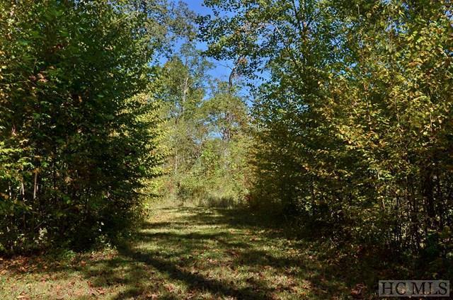 Lot 47 Pilot Knob Road, Glenville, NC 28736 (MLS #87145) :: Berkshire Hathaway HomeServices Meadows Mountain Realty