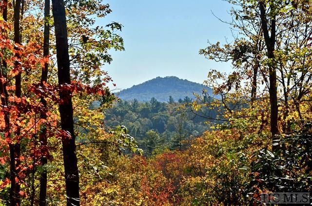 Lot 28 Sapphire Ridge Road, Sapphire, NC 28774 (MLS #87156) :: Lake Toxaway Realty Co