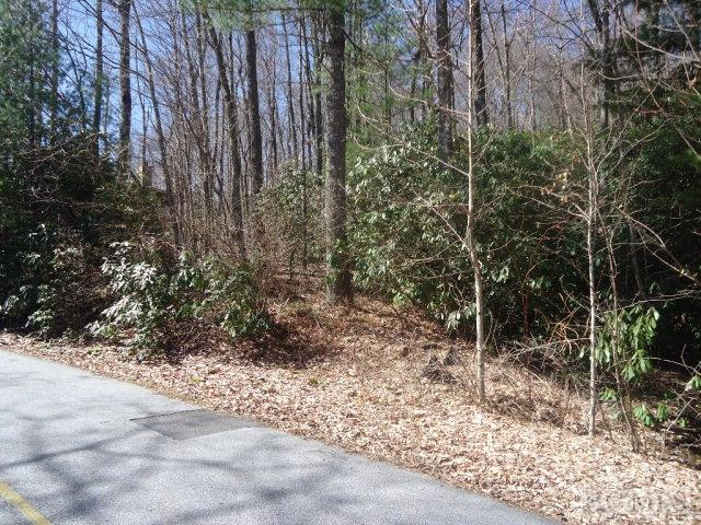 Lot 130 Birdnest Road, Sapphire, NC 28774 (MLS #87217) :: Landmark Realty Group
