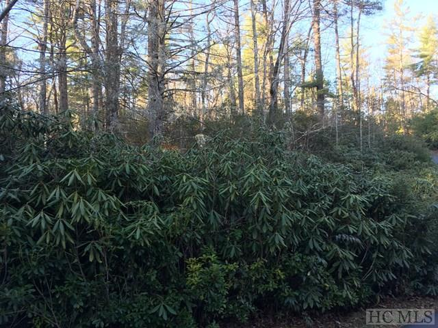 TBD Wild Berry Court, Sapphire, NC 28774 (MLS #87244) :: Berkshire Hathaway HomeServices Meadows Mountain Realty