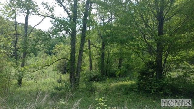 TBD Hwy 170N, Glenville, NC 28736 (MLS #87267) :: Landmark Realty Group
