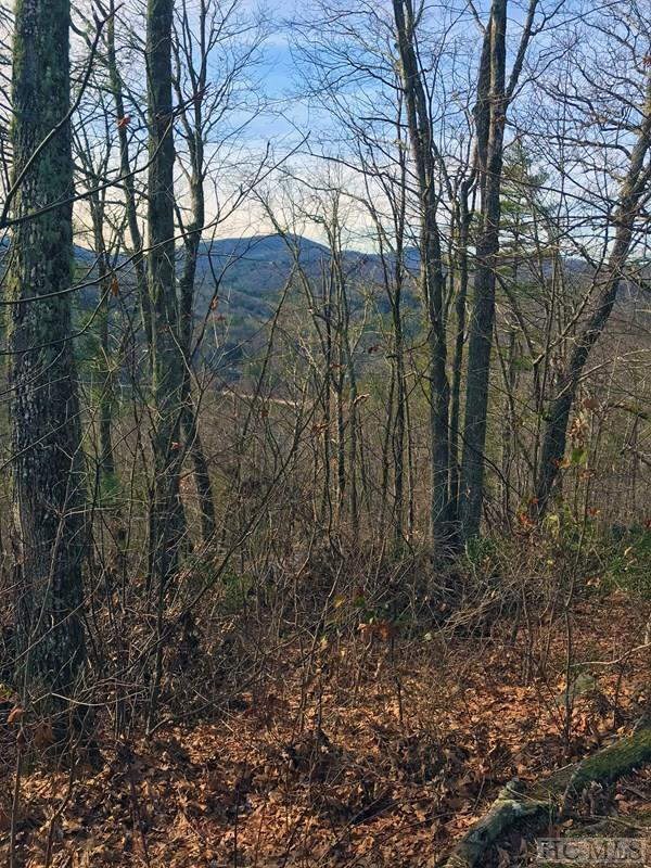Lot 13 Tabletop Road, Glenville, NC 28736 (MLS #87317) :: Berkshire Hathaway HomeServices Meadows Mountain Realty