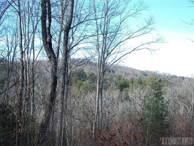 000 Kettle Creek Road, Cashiers, NC 28717 (MLS #87320) :: Berkshire Hathaway HomeServices Meadows Mountain Realty
