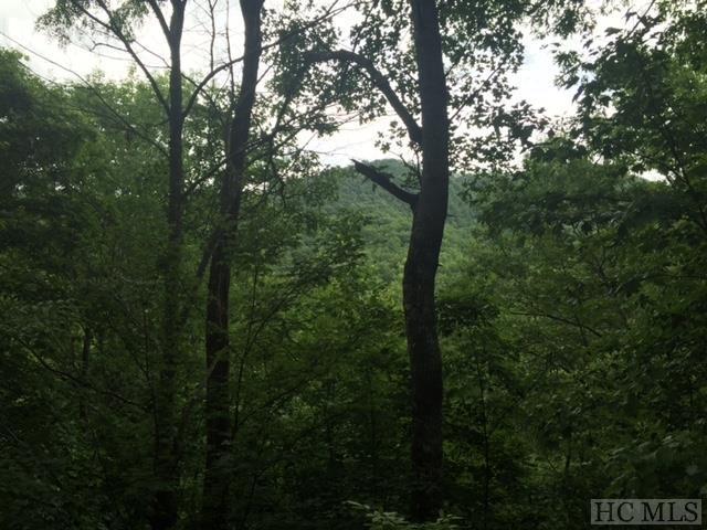 141 Birdymay Drive, Tuckasegee, NC 28783 (MLS #87353) :: Lake Toxaway Realty Co