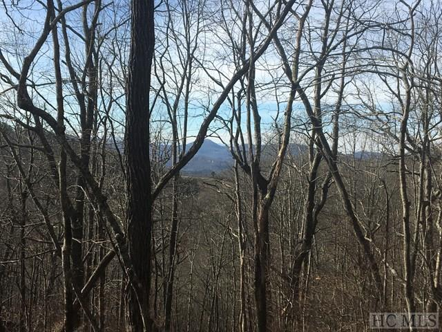 TBD Valley View Trail, Glenville, NC 28736 (MLS #87387) :: Lake Toxaway Realty Co