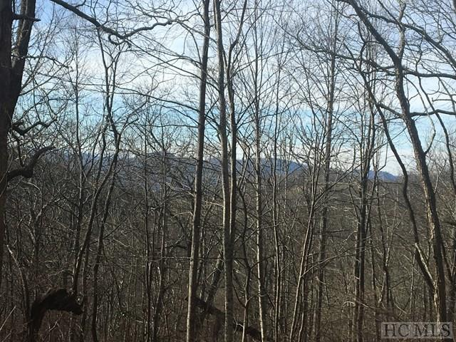 TBD Fowler Road, Glenville, NC 28736 (MLS #87388) :: Lake Toxaway Realty Co