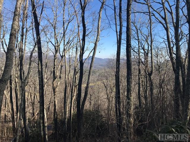 118 Broadview Drive, Highlands, NC 28741 (MLS #87396) :: Lake Toxaway Realty Co