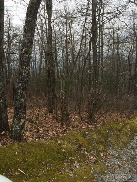 Lot 12 Mica Court, Sapphire, NC 28774 (MLS #87442) :: Berkshire Hathaway HomeServices Meadows Mountain Realty