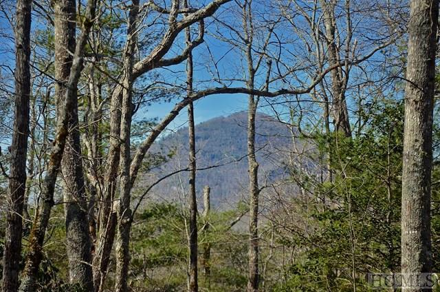 Lot 5 Shady Glen, Cashiers, NC 28717 (MLS #87480) :: Berkshire Hathaway HomeServices Meadows Mountain Realty