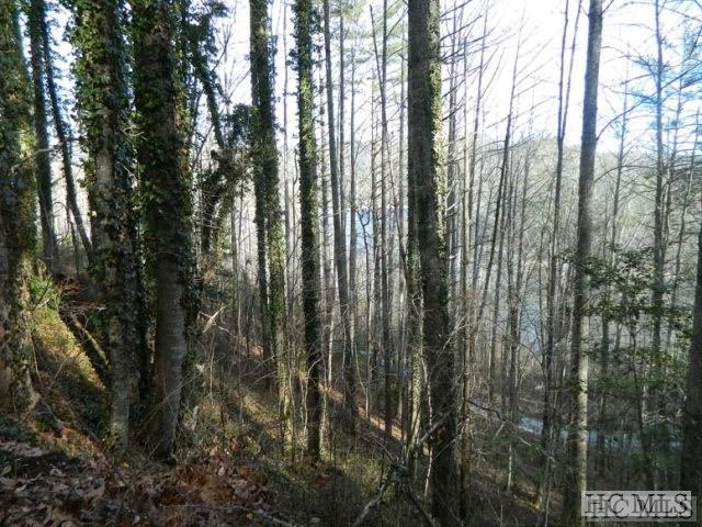 22-25 Wilderness Trail, Cullowhee, NC 28723 (MLS #87518) :: Berkshire Hathaway HomeServices Meadows Mountain Realty