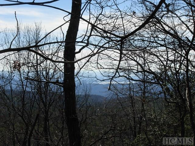 39 Round Top Mountain Crest Road, Sapphire, NC 28774 (MLS #87521) :: Lake Toxaway Realty Co