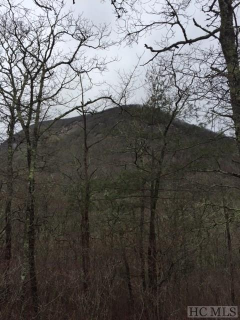 148 Forest Edge Lane, Highlands, NC 28741 (MLS #87540) :: Lake Toxaway Realty Co