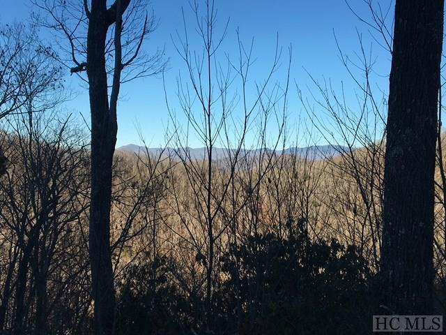 Lot 71 Autumn Blaze Trail, Glenville, NC 28736 (MLS #87563) :: Berkshire Hathaway HomeServices Meadows Mountain Realty