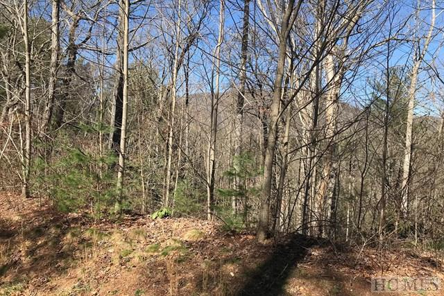 TBD Upper Whitewater Road, Sapphire, NC 28774 (MLS #87632) :: Lake Toxaway Realty Co