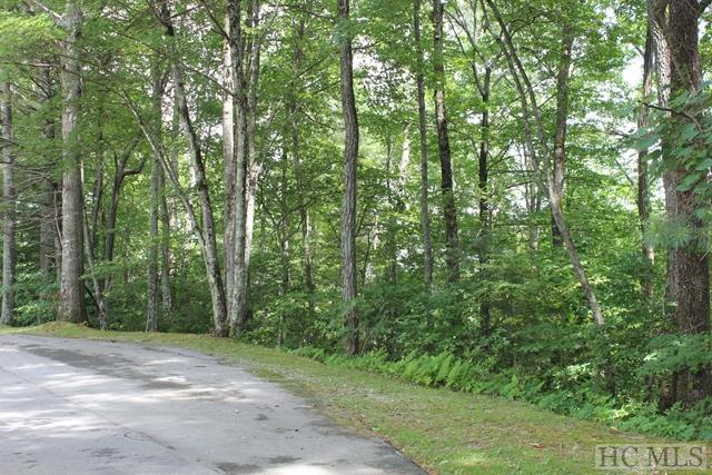 Lt 4 Golf View Road, Sapphire, NC 28774 (MLS #87634) :: Lake Toxaway Realty Co