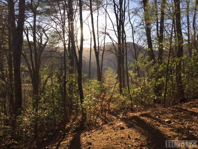 Lot 9 Gorge View, Highlands, NC 28741 (MLS #87636) :: Berkshire Hathaway HomeServices Meadows Mountain Realty