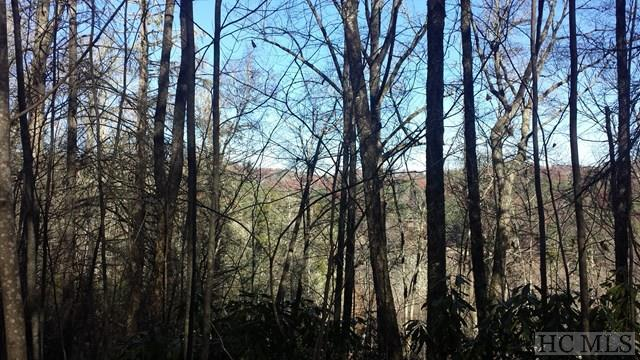 TBD Woods Mountain Trail, Cullowhee, NC 28723 (MLS #87643) :: Lake Toxaway Realty Co