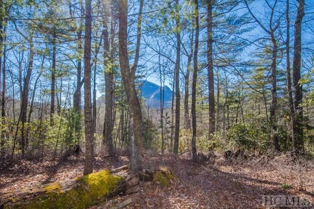 Lot 9 Brook Trout Trail, Cashiers, NC 28717 (MLS #87659) :: Berkshire Hathaway HomeServices Meadows Mountain Realty