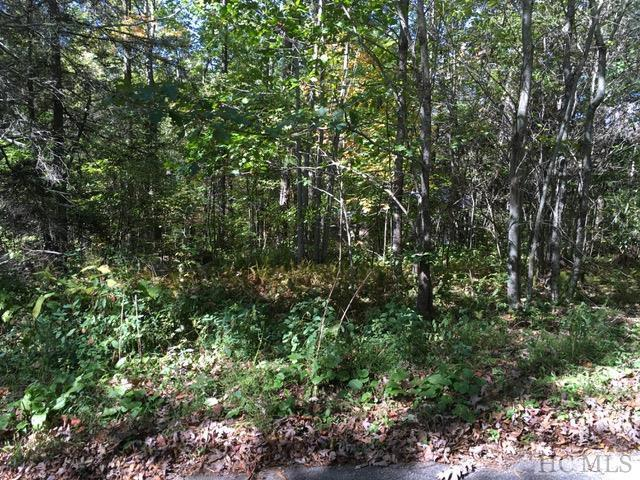 TBD Cullasaja Drive, Highlands, NC 28741 (MLS #87681) :: Berkshire Hathaway HomeServices Meadows Mountain Realty