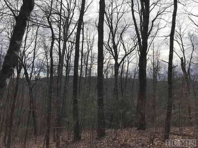 Lot 62 Buckberry Drive South, Sapphire, NC 28774 (MLS #87718) :: Lake Toxaway Realty Co
