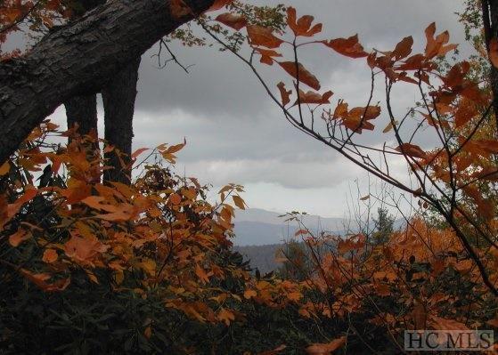 Camp 5 Toxaway Drive, Lake Toxaway, NC 28747 (MLS #87723) :: Lake Toxaway Realty Co