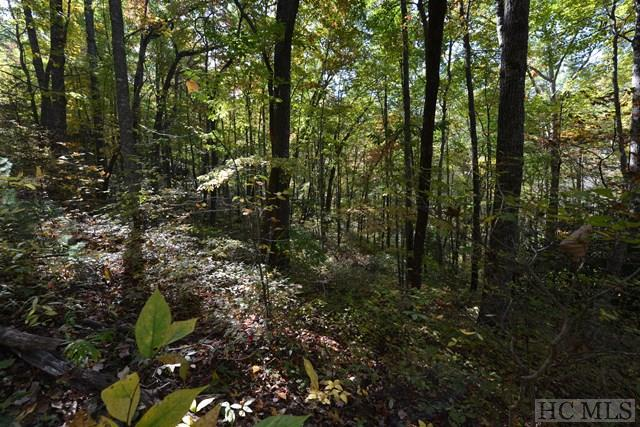 View  Pt View Point Road, Highlands, NC 28741 (MLS #87758) :: Lake Toxaway Realty Co