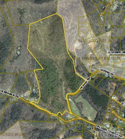 00 Norris Road, Otto, NC 28763 (MLS #87996) :: Lake Toxaway Realty Co