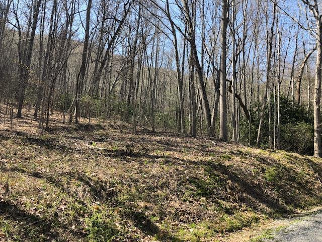 Lot 24 Cullowhee Forest Road, Cullowhee, NC 28723 (MLS #88083) :: Berkshire Hathaway HomeServices Meadows Mountain Realty