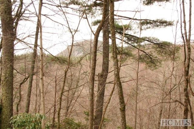 #187 Lost Trail, Highlands, NC 28717 (MLS #88117) :: Berkshire Hathaway HomeServices Meadows Mountain Realty