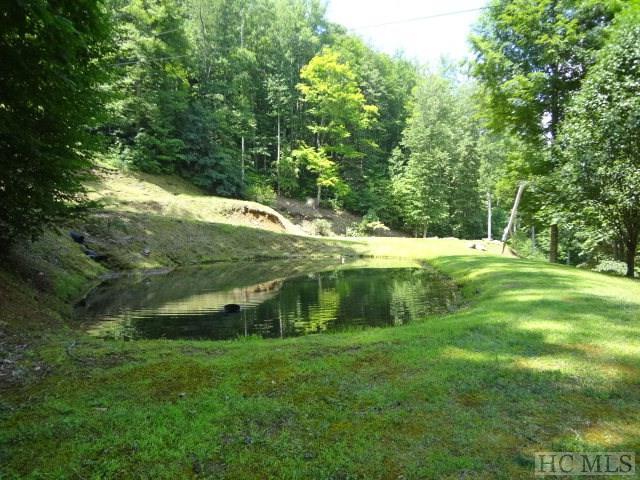 937 Glenview Lane, Franklin, NC 28734 (MLS #88159) :: Lake Toxaway Realty Co