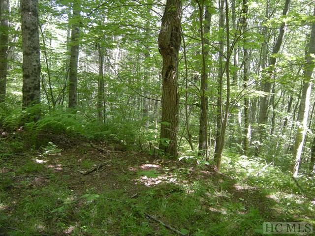 0 Scout Mountain Drive, Cullowhee, NC 28723 (MLS #88300) :: Lake Toxaway Realty Co