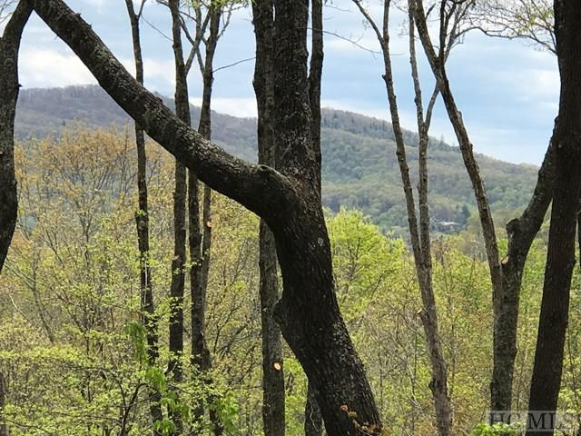 Lot 5 Great Falls Drive, Glenville, NC 28736 (MLS #88362) :: Berkshire Hathaway HomeServices Meadows Mountain Realty